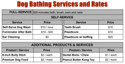 Dog Bathing Services and Pricing