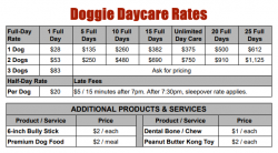Doggie Day Care Services and Pricing