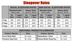 Sleepover Rates and Pricing