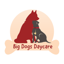 big-dogs-daycare-denver-logo