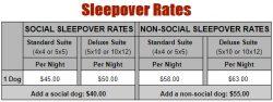 sleepover-rates